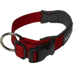 Outdoor Paws Dog Collar