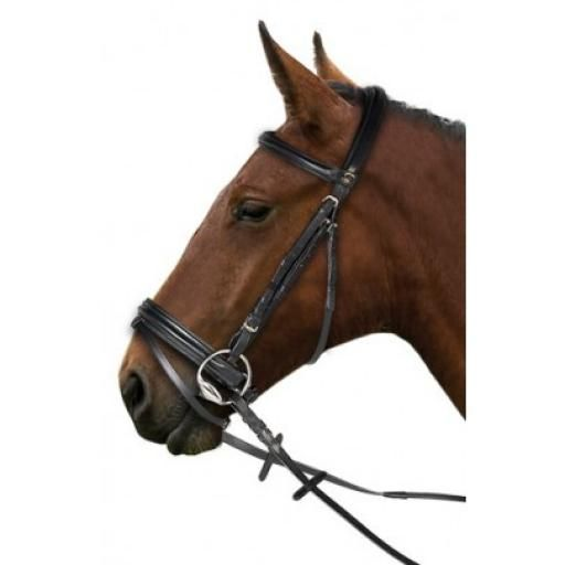 Gallop Comfort Bridle