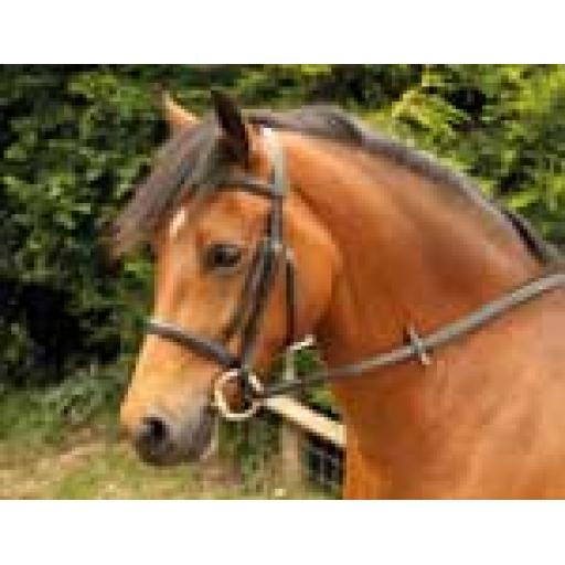 Leather Bridle Snaffle