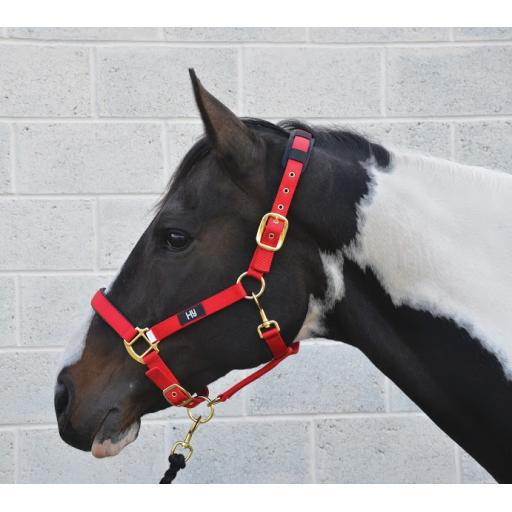 Deluxe hy head collar cob