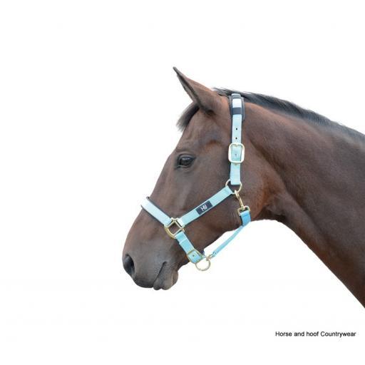 hy-deluxe-padded-head-collar-[2]-59164-p.jpg