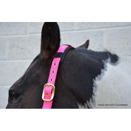 hy-deluxe-padded-head-collar-[3]-59164-p.jpg