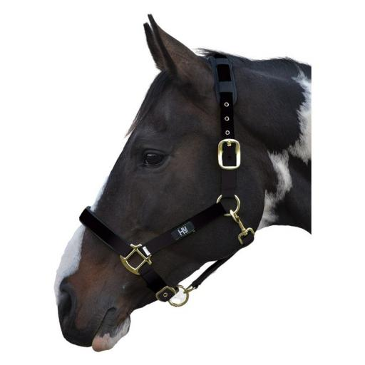 Deluxe hy Head Collar Pony