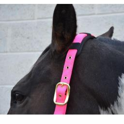 hy-deluxe-padded-head-collar-[3]-59164-p.jpg