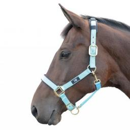 hy-deluxe-padded-head-collar-[2]-59164-p.jpg