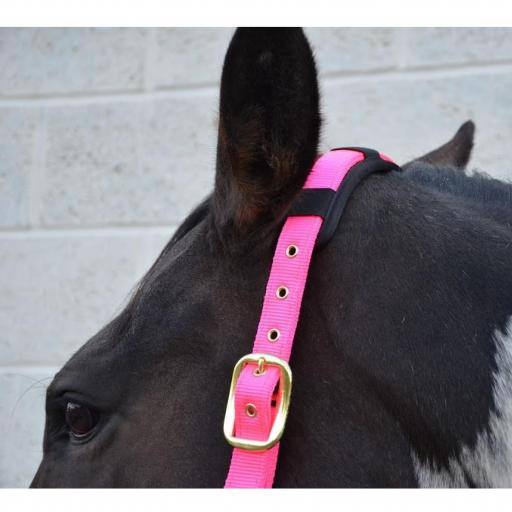 Deluxe hy head collar x full