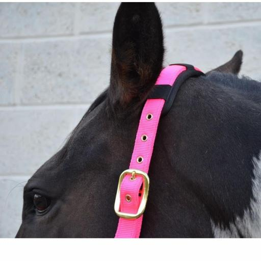 Deluxe hy head collar x small pony