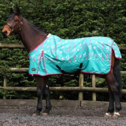 sea horse rug 2.jpg
