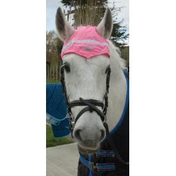490_Pink hiviz horse hat.jpg