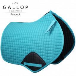 gallop peacock_1.jpg