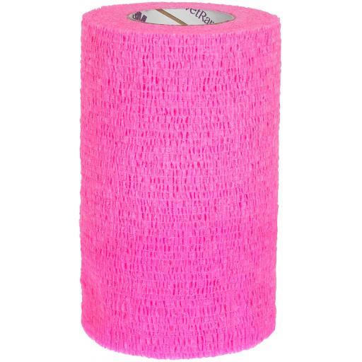 pink vet.jpg